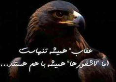 خرید شارژ ایرانسل از طریق سایت ایتور